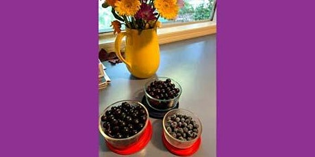 Very Berry Tour of Beacon Food Forest tickets