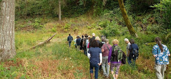 2021 Summit Field Workshop: Chehalem Ridge Nature Park image