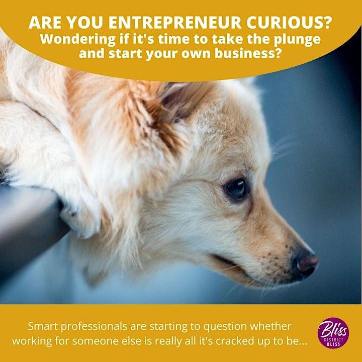 "Are You ""Entrepreneur Curious?"" image"