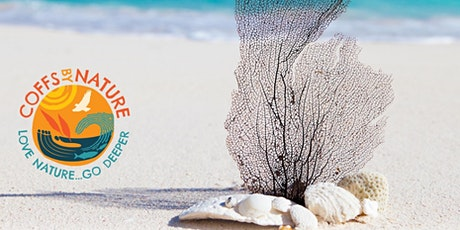 Coffs By Nature Connected ~ Little Wildings: Nature Sculptures tickets