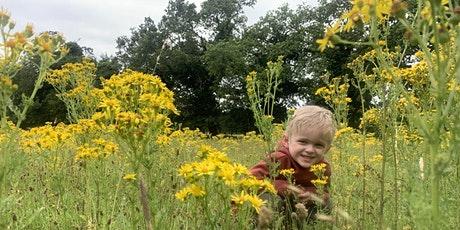 Wild Tots at Redgrave & Lopham Fen - Monday 4th October (ERC 2814) tickets