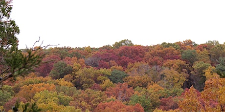 Fall Colors Special Event Guided Tours tickets