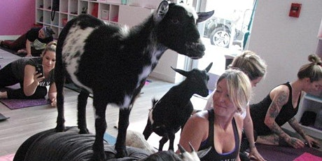 Goat Yoga Downtown tickets