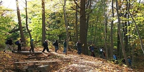 Trail of the Month | High Rock Park: Green Trail/Moses Mtn. tickets
