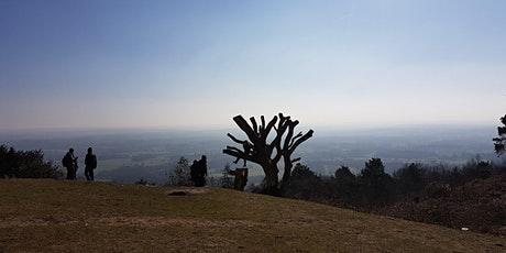 Leith Hill & Tillingbourne Waterfall Hike tickets