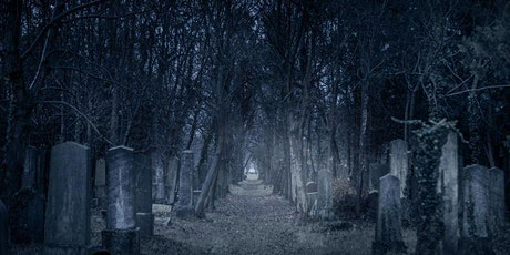 Adventures Beyond the Veil Virtual Class-Jennifer Morris-October 20, 7:30pm tickets