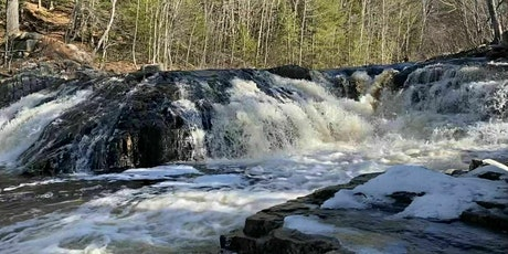 Barter Based Rock Walk at McMasters Mill tickets