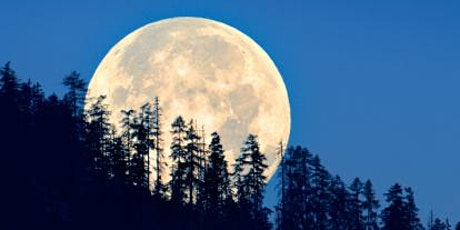 RIVERSIDE CEMETERY FULL MOON PHOTO SHOOT for PHOTOGRAPHERS tickets