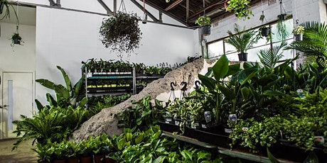 Perth - Huge Indoor Plant Warehouse Sale - Rare Plant Party tickets