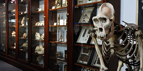 Welcome Week - D'Arcy Thompson Zoology Museum tickets
