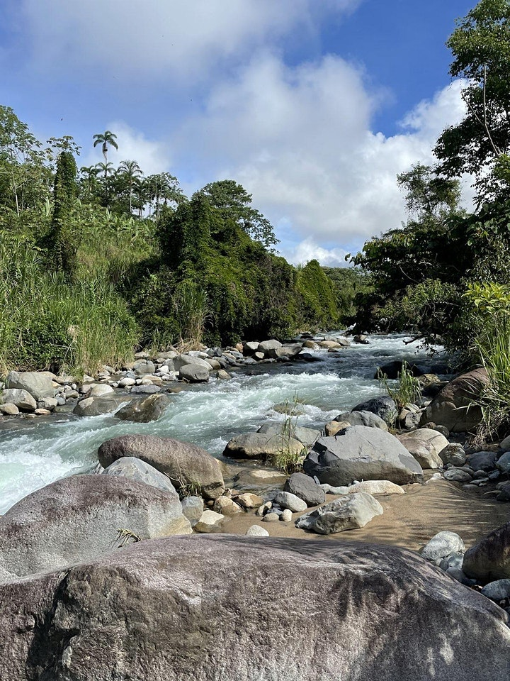 COSTA RICA RETREAT NOVEMBER 8-15 ( email: julyet@gmail.com for more info) image