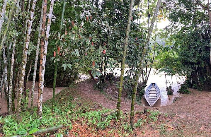 AMAZON RETREAT image