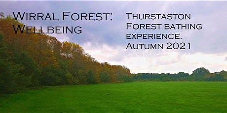 Wirral Forest:wellbeing. Thurstaston Forest Bathing Experience tickets