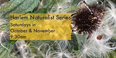 Harlem Fall Naturalist Series tickets