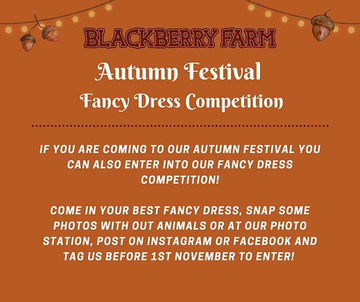 Blackberry Farm's Autumn Festival image