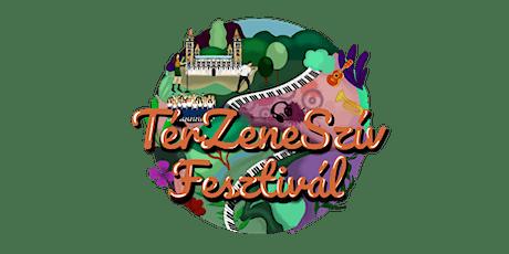 TérZeneSzív Fesztivál tickets