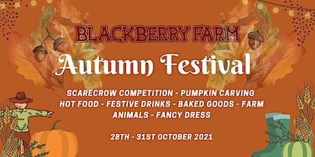 Blackberry Farm's Autumn Festival tickets