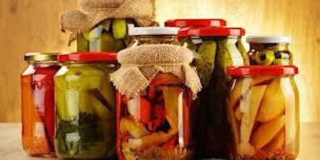 Benditas Bacterias: Alimentos Fermentados & Equilibrio Hormonal entradas