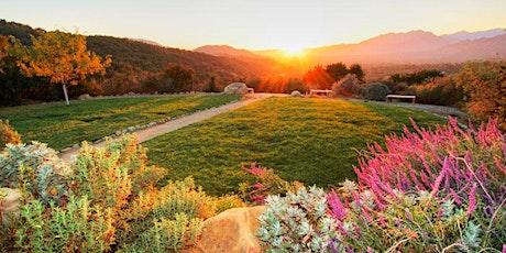 Sunday Sunset Self-Guided Meditation 10-10-2021 tickets