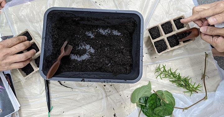 Online - Art of Planting starts  Nov 13 (4 sessions) image