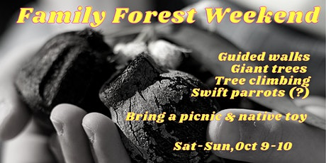 Family Forest Weekend tickets