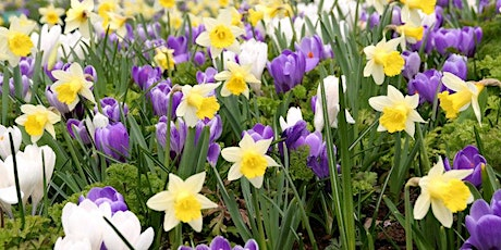 NHS EVENT: Staff bulb planting hour at Broadgreen tickets