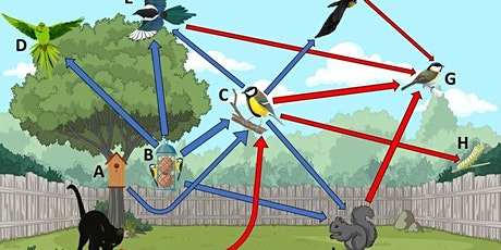 Does bird feeding help or hinder avian conservation? tickets