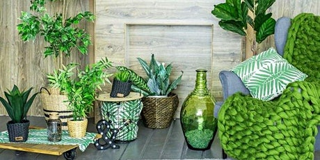 Indoor plants, how to choose and care for them correctly tickets