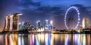 Is Singapore on the verge of divorce with Nature?