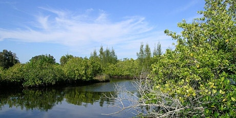 EcoWalk: Unique Preserves of Sarasota County - Curry Creek East tickets