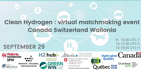 Clean hydrogen: virtual matchmaking between Canada Switzerland and Wallonia billets
