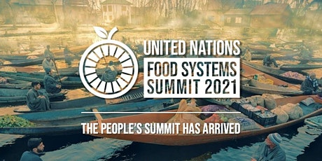 Ultra-Processed Foods and the 'corruption' of the UN Food Systems Summit entradas