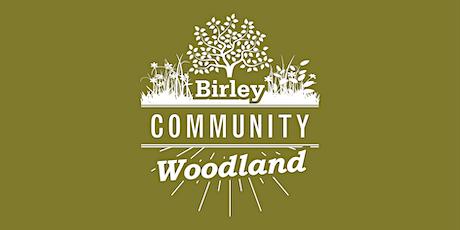 Birley woodland workshop tickets