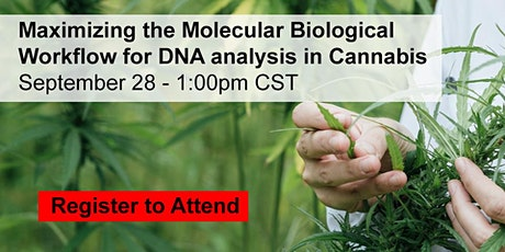 Maximizing the Molecular Biological Workflow for DNA analysis in Cannabis tickets