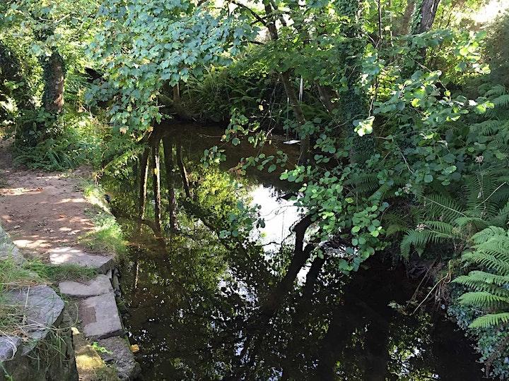 "Wexford Celebrates  ""World Rivers Day"" image"