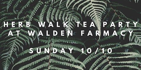 Herbwalk & Tea Party Picnic tickets