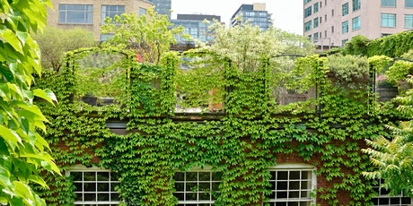 Nature-based solutions implementation – Learning from the GrowGreen cities tickets