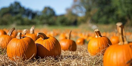 It's Rench Real Estate's Great Pumpkin Client  Appreciation tickets