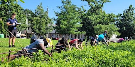 Volunteer Landscaping @ Schmul Park tickets