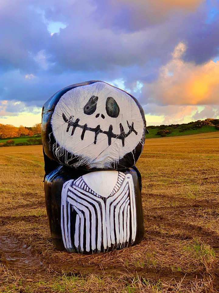 Halloween experience, Pick your own Pumpkins, Spooky Maze, Bale Trail image