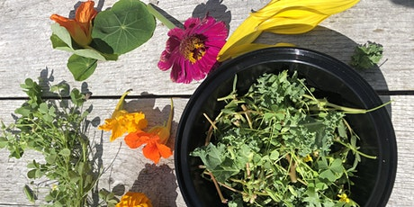 You Can Eat That? Edible Garden Weeds and More! (Virtual Workshop) tickets