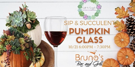 Sip and Succulents tickets