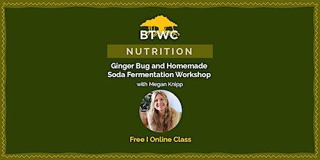 Ginger Bug and Homemade Soda Fermentation Workshop tickets
