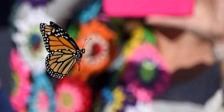 October Second Saturday: The Magical World of Butterflies & Bats tickets