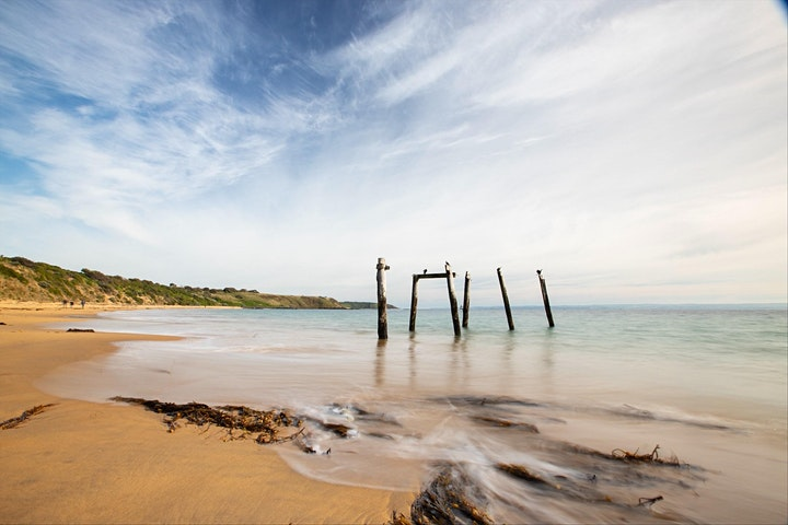 School Holiday Photography Workshop Online image