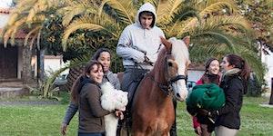 Horse Boy Demo Arnhem Oct 2015