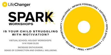 Spark Workshop Series tickets