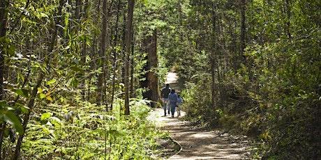 Junior Ranger – A very big bushwalk! Kinglake National Park tickets