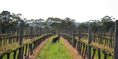 A Winery and Grand Designs Australia Journey tickets