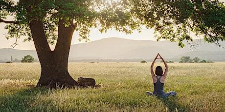 RESPIRARE CON GLI ALBERI D'AUTUNNO. Yoga, respirazione, rilassamento biglietti